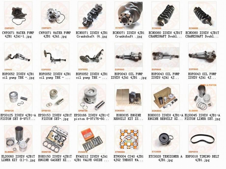 Tcm Forklift isuzu 4jb1,4ja1 Engine Parts Manufacturer