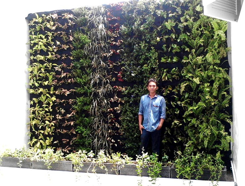 Services cheap vertical garden from indonesia by pitulast taman cheap vertical garden solutioingenieria Images