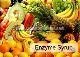 Enzyme Syrup