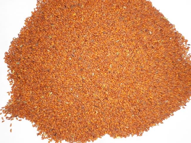 Asaliya Seeds