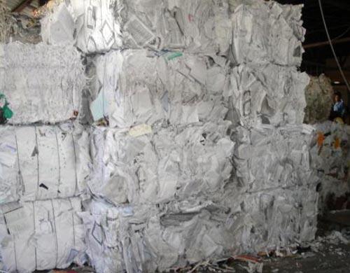 Sorted White Ledger Waste Paper Manufacturer & Exporters