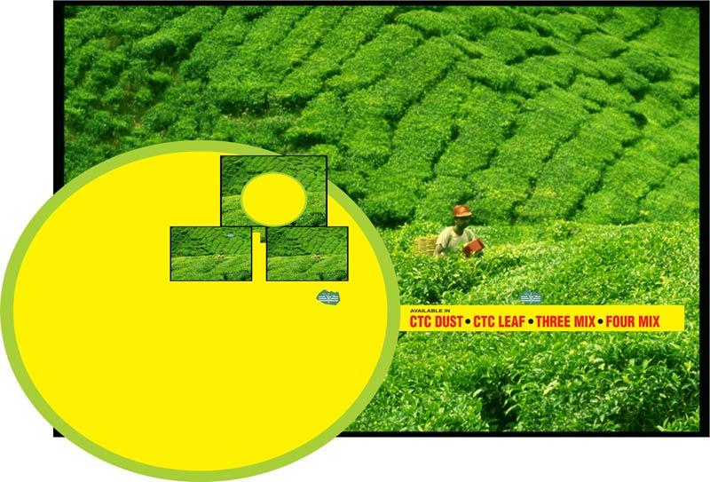 Buy Ctc Dust Tea from Green Field Taaza Tea, Bijapur, India