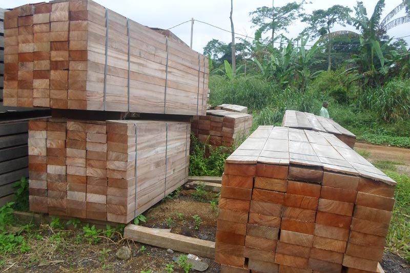 Dabema Timber Manufacturer Exporters From Yaounde