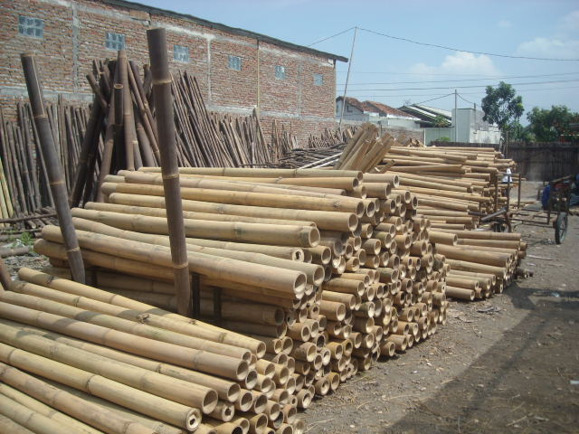 Big bamboo poles manufacturer from