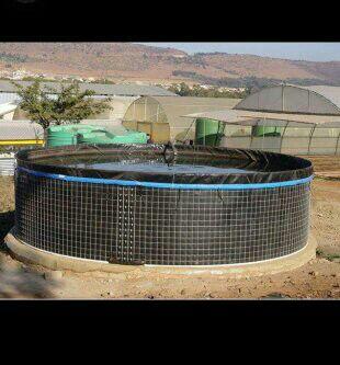 fish tanks (WTI)