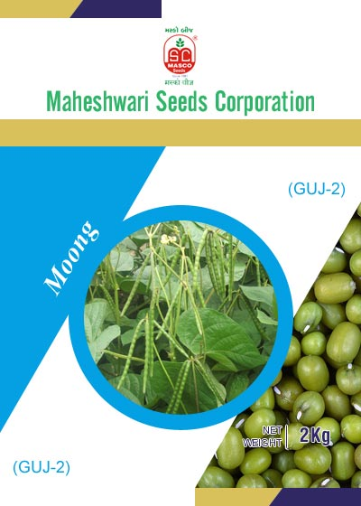 GUJ-2 Moong Seeds