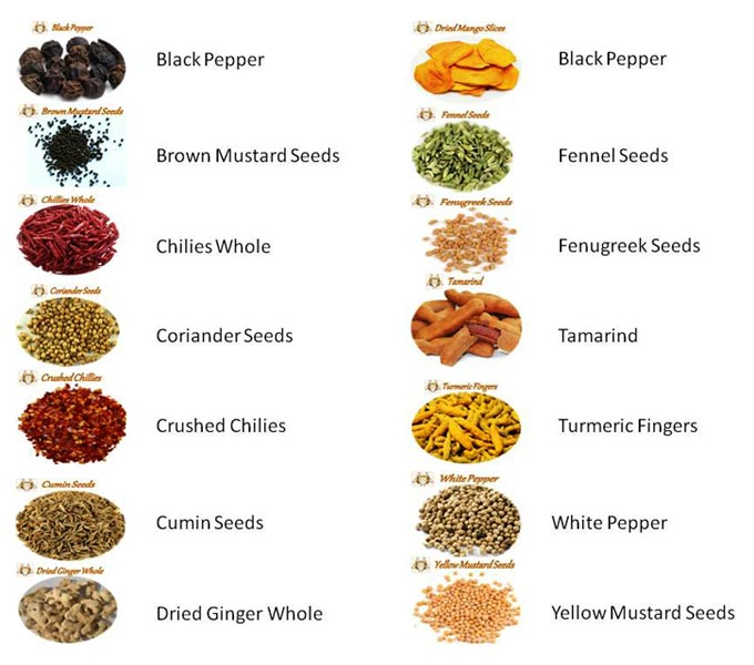 Indian Food Spices Suppliers