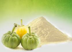Garcinia Cambogia Extract Powder Manufacturer In Erode Tamil Nadu India Id 3570558