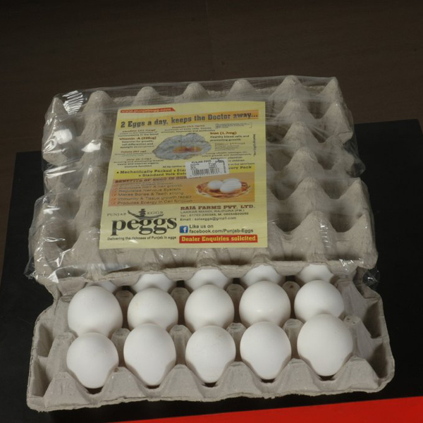 White Poultry Eggs