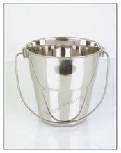 Ice Bucket Diplomat