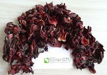 Dry Hibiscus Flower