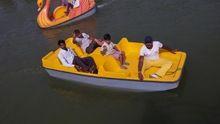 Stylish Paddle Boat