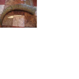 buffalo horn handles