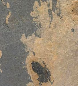 Autumn Rustic Opaque Series Slate
