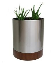 Stainless Steel Plants Planter
