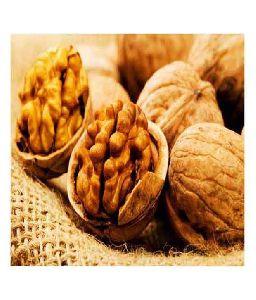 welnut