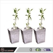 Stainless Steel Plant Pots Metal