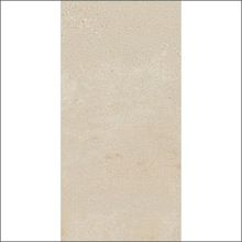 Absorption Rustic Porcelain Floor Tile