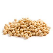 Soya Bean Seed