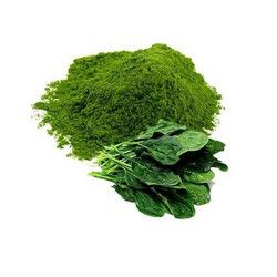 Spinach Palak Powder