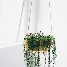 Hanging Brass Flower Vase