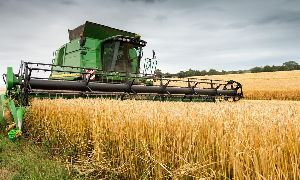 Agricultural Third Party Business Consultant