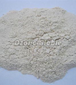 Dehydrated Red & White Onion Powder