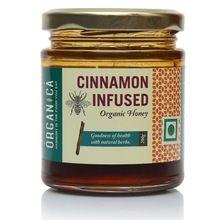 Organic Indian Cinnamon Infused Honey