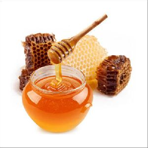 Natural Eucalyptus Honey