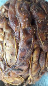 Seedless Tamarind With Fiber