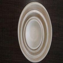 Biodegradable Areca Dinner Plate