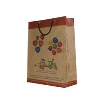 Eco Friendly Printed Paper Bags