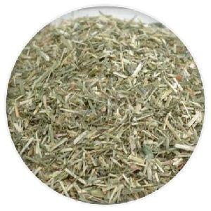 Dry Alfalfa