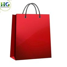 Paper Gift Shopping Bag
