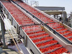 Tomato Paste And Puree Processing Plant