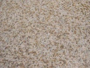 Misty Yellow Granite