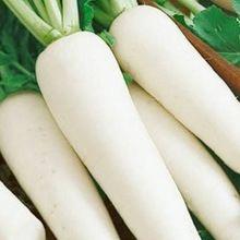 Fresh Mixed Vegetables