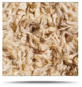 Raw Wool Exporter