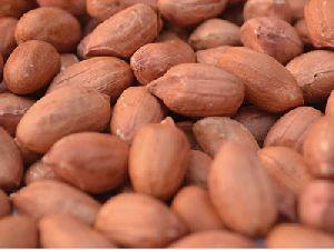 Red Peanut Kernel