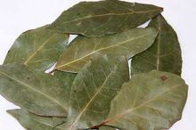 Bay Leaf Dried