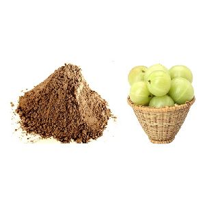 Amla Extract Powder Amla Indian Gooseberry Extract