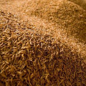 Rice Fiber Waste