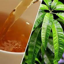 Herbal Mango Leaf Tea