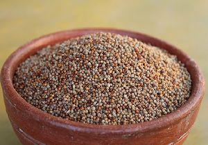 Natural Finger Millet Seed