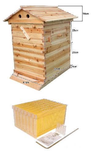 Honey Beehive Box
