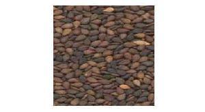 brown sesame