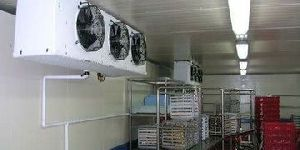 Freezer Cold Storage Room