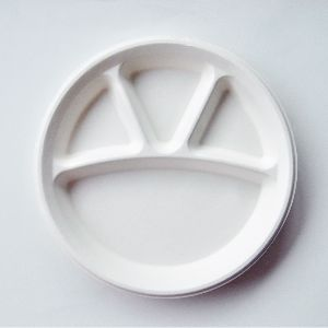Compartment Round Plate