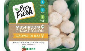 Eco Fresh Champignon Mushrooms