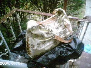 Luxury Hobo Bag